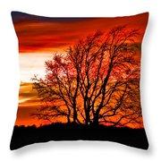Texas Sunset Throw Pillow by Darryl Dalton