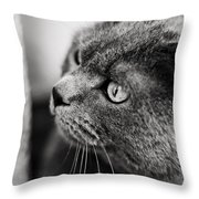 The Ambush Throw Pillow by Laura Melis