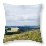 The Artist Throw Pillow by Wendy Wilton