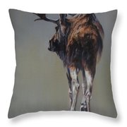 The Bachelor Throw Pillow by Mia DeLode