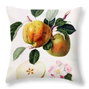 The Beauty Of Kent Throw Pillow by William Hooker