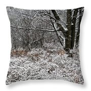 The Beauty of Winter Throw Pillow by Aimee L Maher Photography and Art