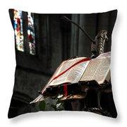 The Bible Throw Pillow by Svetlana Sewell