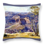 The Canyon Throw Pillow by Lee Piper