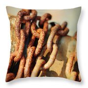 The Chain Throw Pillow by Rebecca Sherman