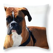 The Challenge Throw Pillow by Camille Lopez