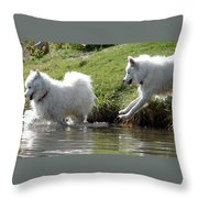 The Chase Throw Pillow by Ramona Johnston