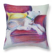 The Comfy Chair Throw Pillow by Ginny Schmidt