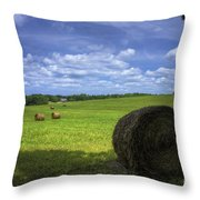 The Country House Hayfield Throw Pillow by Reid Callaway