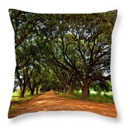 The Deep South Throw Pillow by Steve Harrington