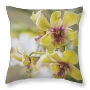 The Earth's Magic Is A Gift Of Wonder Throw Pillow by Sharon Mau