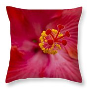 The Expression Of Love Throw Pillow by Sharon Mau