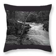 The Falls Throw Pillow by David Rucker