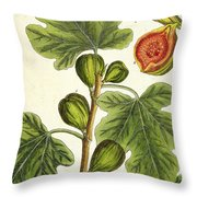 The Fig Tree Throw Pillow by Elizabeth Blackwell