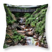 The Flume Throw Pillow by Heather Applegate