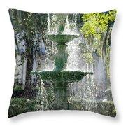 The Fountain Throw Pillow by Mike McGlothlen