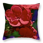 The Geraniums Throw Pillow by Gwyn Newcombe