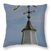 The Golden Dolphin Weathervane Throw Pillow by Juergen Roth