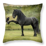 The Harbinger Throw Pillow by Fran J Scott
