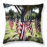 The Healing Field Throw Pillow by Laurel Powell