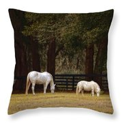 The Horse And The Pony - Standard Size Throw Pillow by Mary Machare