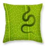 The Hunter Throw Pillow by Aged Pixel
