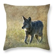 The Journey Throw Pillow by Angie Vogel