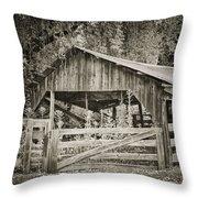 The Last Barn Throw Pillow by Joan Carroll