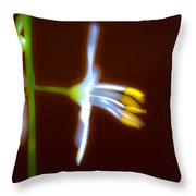 The Light Within Throw Pillow by Marie Jamieson