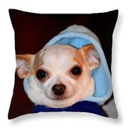 The Lightweight Contender Throw Pillow by Maria Urso