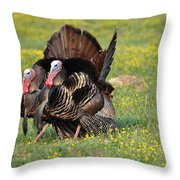The Line Up Throw Pillow by Todd Hostetter