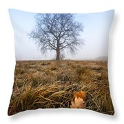 The Lone Oak Throw Pillow by Davorin Mance