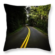 The Long And Winding Road Throw Pillow by Natasha Marco