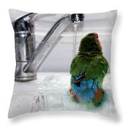The Lovebird's Shower Throw Pillow by Terri  Waters