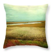The Low Country Throw Pillow by Amy Tyler