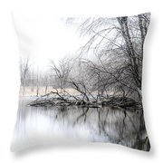 The Marsh Throw Pillow by Julie Palencia