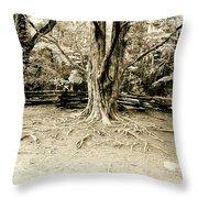 The Matriarch Throw Pillow by Scott Pellegrin