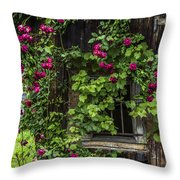 The Old Barn Window Throw Pillow by Debra and Dave Vanderlaan
