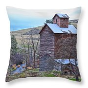 The Old Grain Storage Throw Pillow by Steve McKinzie