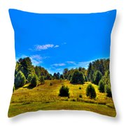 The Old Maple Ridge Ski Area - Old Forge Ny Throw Pillow by David Patterson