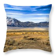 The Old One Throw Pillow by Robert Bales