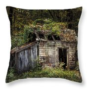 The Old Shack In The Woods - Autumn At Long Pond Ironworks State Park Throw Pillow by Gary Heller