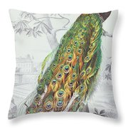 The Peacock Throw Pillow by A Fournier