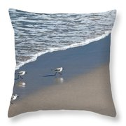 The Pied Sandpiper Throw Pillow by Michelle Wiarda