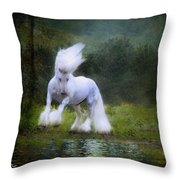 The Reflection Throw Pillow by Fran J Scott