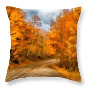 The Road Less Traveled Throw Pillow by Jon Burch Photography