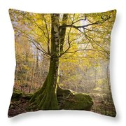 The Rock Tree Throw Pillow by Sophie De Roumanie
