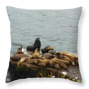 The Sea Lion And His Harem Throw Pillow by Mary Machare