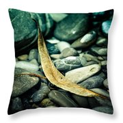 The Ship In The Harbour Throw Pillow by Hannes Cmarits