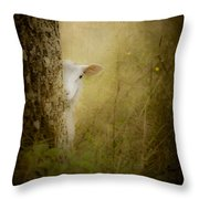 The Shy Lamb Throw Pillow by Loriental Photography